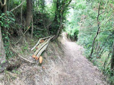 sentiero trekking campania
